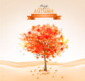 Autumn tree with orange leaves. Vector Stock Photography