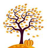 Autumn tree and pumpkin Royalty Free Stock Photography