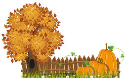 Autumn Tree and pumpkins royalty free illustration