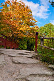 Autumn tree and red wooden bridge with stone laid pathway at the Royalty Free Stock Photography