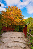 Autumn tree and red wooden bridge with stone laid pathway at the Stock Image