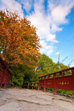 Autumn tree and red wooden bridge with stone laid pathway at the Royalty Free Stock Image