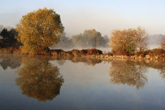 Autumn tree reflection in water. And fog Royalty Free Stock Photos