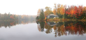 Autumn tree reflections in the lake royalty free stock photography