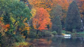 Autumn tree reflections in the pond stock photography