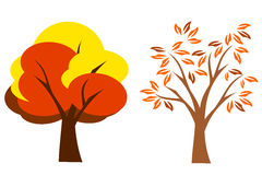 Autumn Tree. Tree in autumn season with orange and red leaves on a white background Stock Illustration