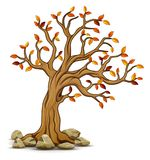 Autumn tree with stones. Illustration of Autumn tree with stones Stock Image