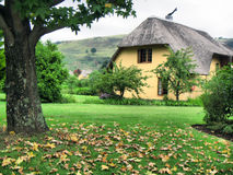 Autumn tree and vacation house in Drakensberg Stock Photo
