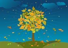 Autumn tree,vector. Autumn tree in the night,vector illustration Stock Images