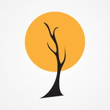 Autumn tree vector illustration Stock Photos
