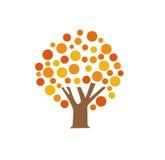 Autumn tree vector illustration. On white Stock Photos