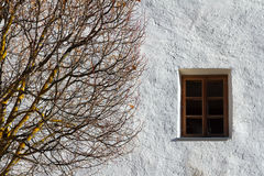 Autumn tree and a window, abstract composition. Stock Photo