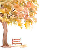 Autumn tree with wooden bench Royalty Free Stock Image