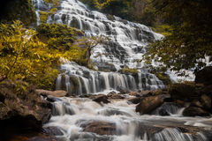 Autumn tree yellow leaves silky smooth waterfall Stock Photo