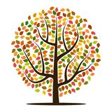 Autumn tree with yellow, orange, brown and green leaves. Stock Photo