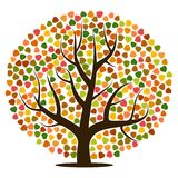 Autumn tree with yellow, orange, brown and green leaves. Vector illustration Stock Photos