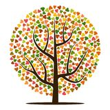 Autumn tree with yellow, orange, brown and green leaves. Vector illustration Royalty Free Stock Photography