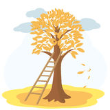 Autumn tree with yellowed leaves and stairs. Vector illustration of autumn tree with yellow leaves and stairs to background of cloudy sky Royalty Free Stock Photos