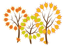 Autumn trees. Illustration. Three stylized tree with colorful leaves on a white background Royalty Free Stock Photo