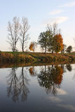 Autumn trees. Reflected on the water Stock Photography