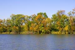 Autumn trees Royalty Free Stock Photos