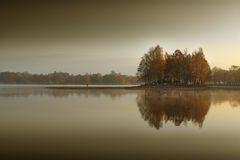 Autumn trees. On the small island among the reflection water Stock Images