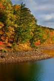 Autumn trees along lake shore Stock Photo