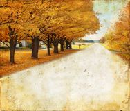 Autumn Trees Along Rural Road On Grunge Background Royalty Free Stock Photography