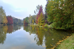 Autumn trees around lake. Fall trees reflected in lake. Royalty Free Stock Photography