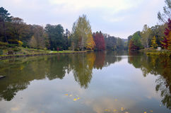 Autumn trees around lake. Fall trees reflected in lake. Stock Images