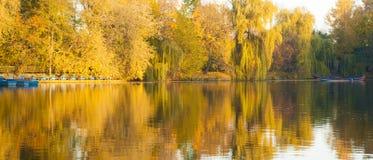 Autumn trees on Autumn lake. Autumn trees reflected in autumn lake Stock Image