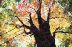 Autumn Trees Canopy Painting Stock Photos