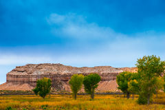 Autumn Trees in the Canyon Utah Fall Landscape Royalty Free Stock Photos