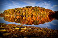 Autumn trees casting reflection on water Stock Photography