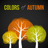 Autumn trees with colorful leaves Stock Image