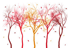 Autumn trees with falling leaves, vector