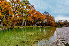 Autumn Trees at Frio River at Garner State Park, Texas Royalty Free Stock Images