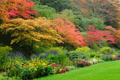 Autumn trees in garden Royalty Free Stock Images