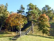 Autumn trees, hill and wooden stair, Lithuania stock photography
