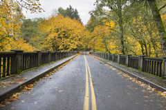 Autumn Trees Historic Columbia Highway Bridge Stock Photos