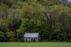 Autumn Trees and Homestead Royalty Free Stock Photos
