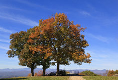 Autumn Trees. Jump Off Rock in the Fall, with North Carolina mountains in the background Stock Images