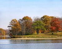 Autumn trees by lake Stock Images