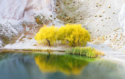 Autumn trees by lake. Golden autumn trees by lake with limestone cliffs at st bathans, south island, new zealand stock image