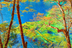Autumn trees by the lake. Royalty Free Stock Image