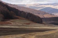 Autumn trees in Mavrovo stock image