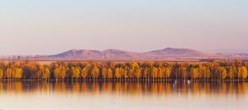 Autumn Trees Mirroring On Danube-rivier met Macin-Bergen op achtergrond Royalty-vrije Stock Afbeelding