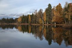 Autumn trees are mirrors in the water difefferent colors blue sky stock photos