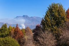 Autumn Trees Mountains Landscape Arkivfoto