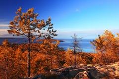 Autumn trees near blue lake Stock Photo